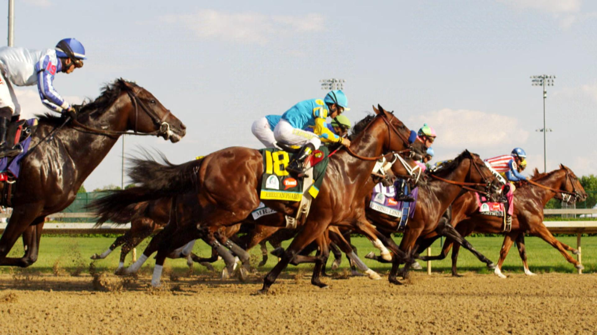 Kentucky Derby Festival - Recommendations for Activities from MangoRV